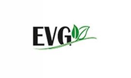 EVG SERVICE SRL